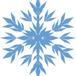 Floco de Neve 10
