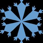 Floco de Neve 11