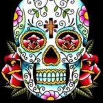 caveiras-mexicanas-capa