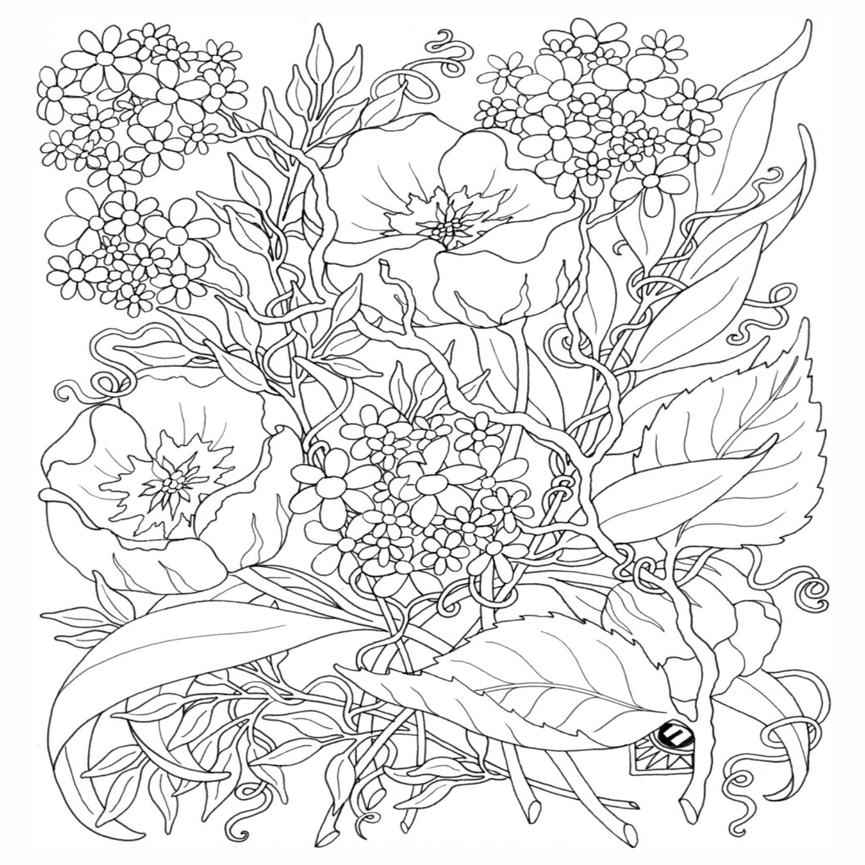 Flores Para Colorir Para Adultos