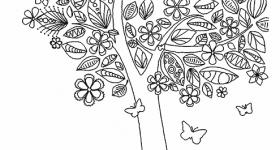 floresta-capa