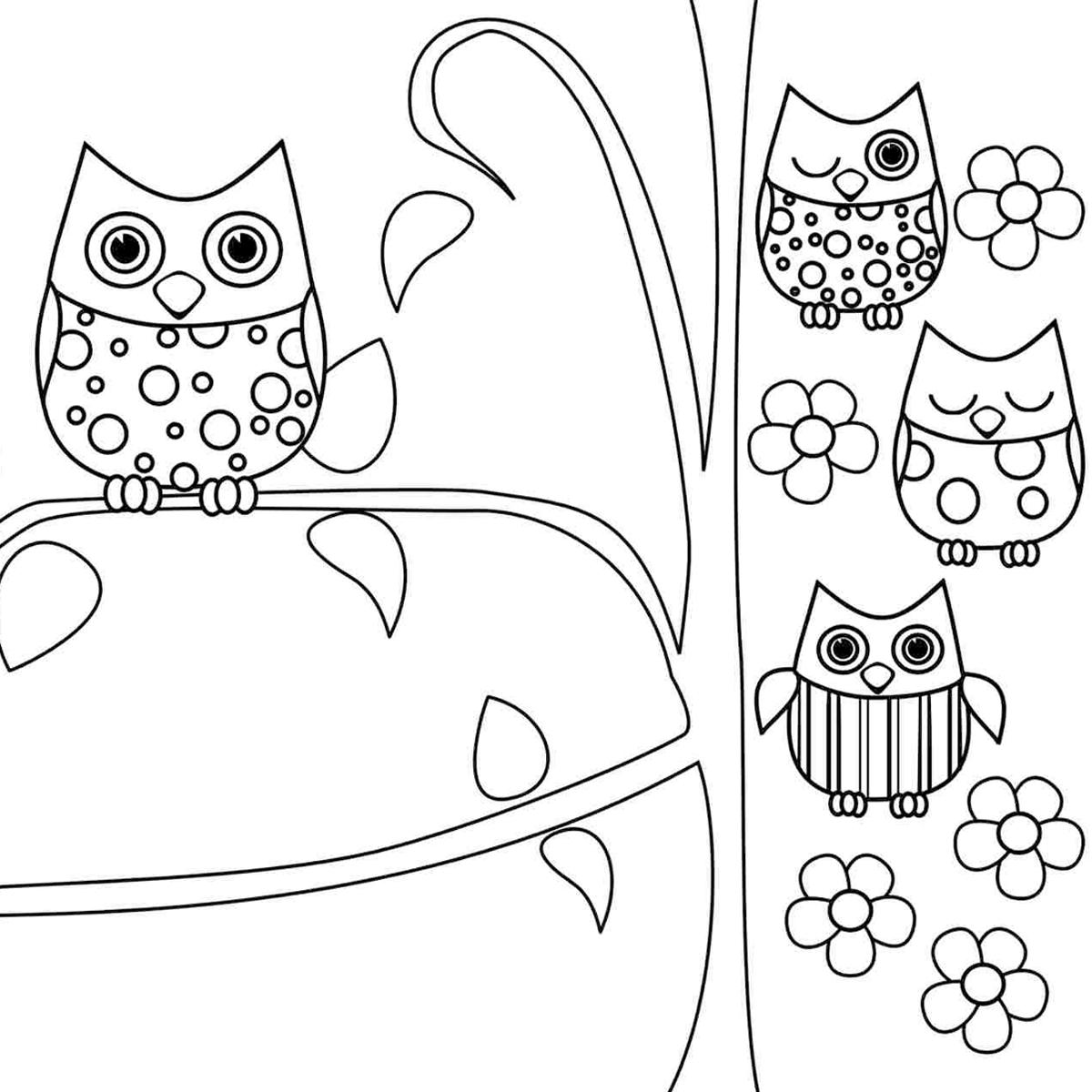 coruja para colorir 14  u2013 imagens png